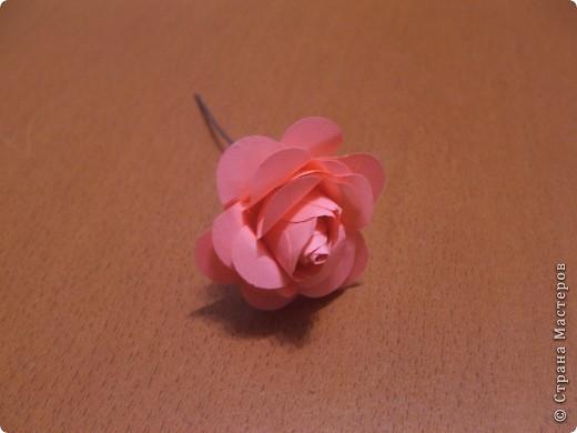Здравствуйте дорогие жители СМ!!! Сегодня хочу поделиться с вами своим открытием!!! Мы будем с вами мастерить розочку как на фото!!! Розочка из бумаги своими руками-это так просто!!! Вдохновила меня на создание этого цветка мамина большая брошка-роза!!! Вот так порой приходит вдохновение!!!)))))  фото 1