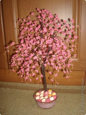 Просто цветочек. фото 3