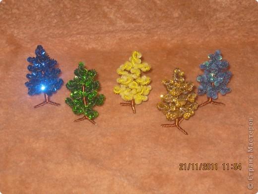 цветной лес фото 2