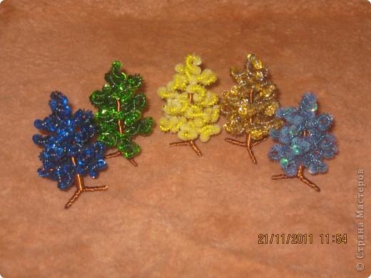 цветной лес фото 1