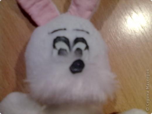 Привет всем!!!На год кролика решила сшить вот такого зайчишку из флиса!!!! фото 3