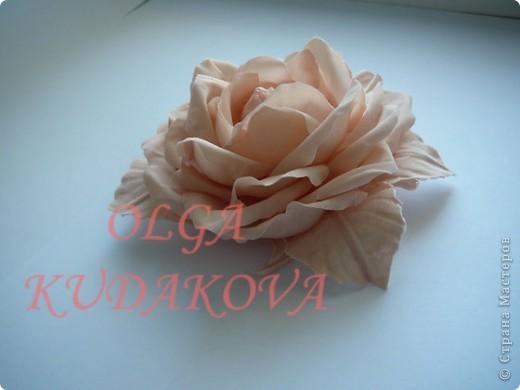 букет из роз фото 5