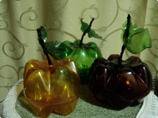Яблочки наливные. фото 1