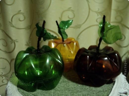 Яблочки наливные. фото 2