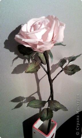 Роза еще в процессе изготовления
