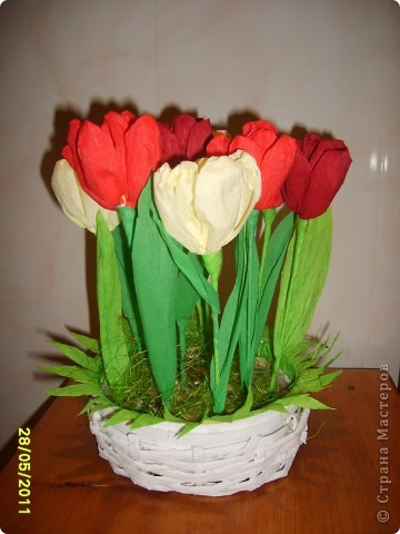 Быстрые тюльпаны