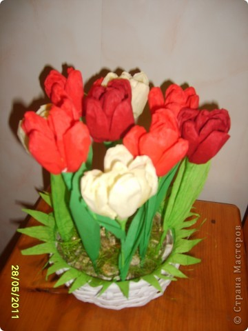 Быстрые тюльпаны фото 2