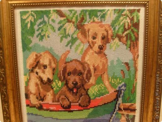 Моей старшей дочурке 13 лет. Вот недавно закончила последнюю  работу. Три щенка в лодке вышивала крестиком . Размер в рамке 25 на 32 фото 2