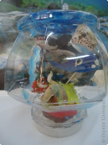 Аквариум и его обитатели фото 3