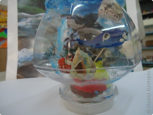 Аквариум и его обитатели фото 2