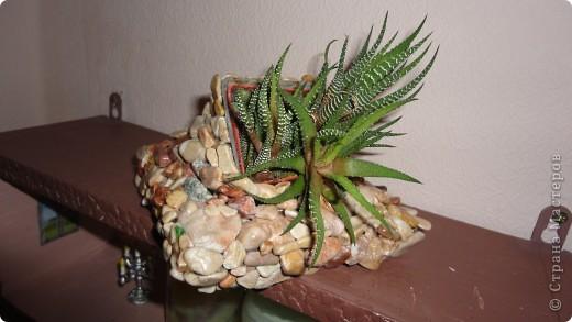 Кашпо из камней фото 2
