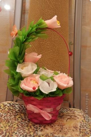 нарциссы и тюльпаны фото 2