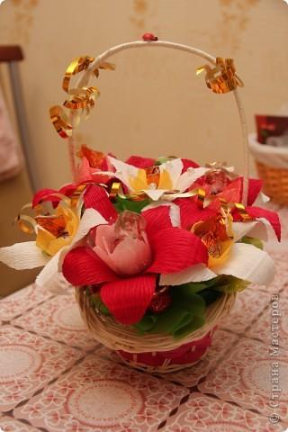 нарциссы и тюльпаны фото 3