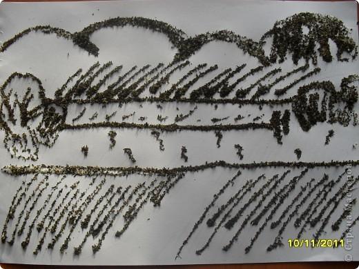 Ароматные пейзажи фото 2