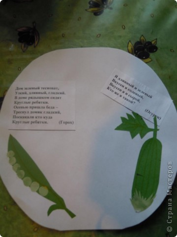 Сделали с дочкой первоклассницей для школы такую вот книжечку в виде арбуза с загадками про урожай . фото 6