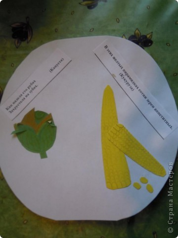 Сделали с дочкой первоклассницей для школы такую вот книжечку в виде арбуза с загадками про урожай . фото 8