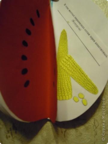 Сделали с дочкой первоклассницей для школы такую вот книжечку в виде арбуза с загадками про урожай . фото 10