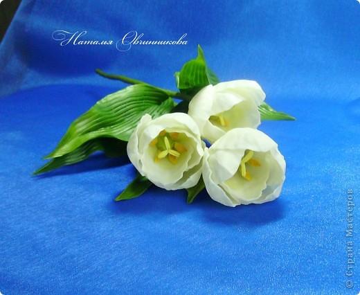 """Сделала белые тюльпаны на заказ. Лепила из глины """"Madonna Lily"""" (делаю сама). фото 5"""