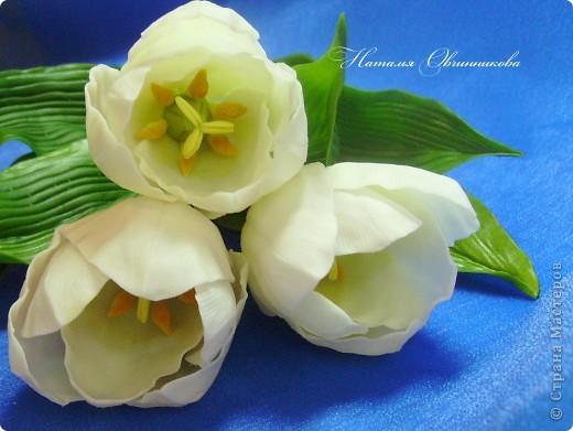 """Сделала белые тюльпаны на заказ. Лепила из глины """"Madonna Lily"""" (делаю сама). фото 1"""