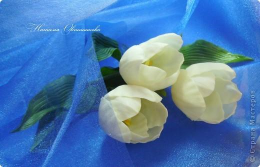 """Сделала белые тюльпаны на заказ. Лепила из глины """"Madonna Lily"""" (делаю сама). фото 2"""