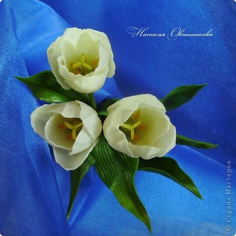 """Сделала белые тюльпаны на заказ. Лепила из глины """"Madonna Lily"""" (делаю сама). фото 4"""