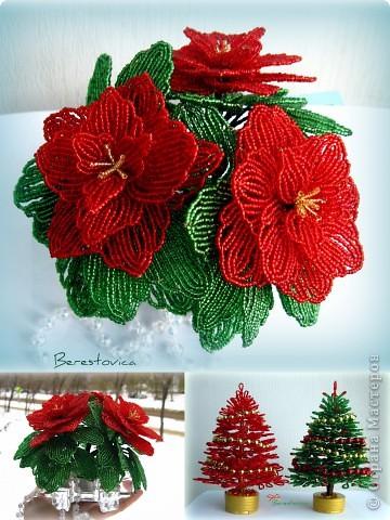 Захотелось сделать вот такой цветок к новому году, называется Пуансеттия или Рождественская звезда фото 1