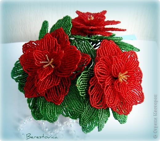 Захотелось сделать вот такой цветок к новому году, называется Пуансеттия или Рождественская звезда фото 2