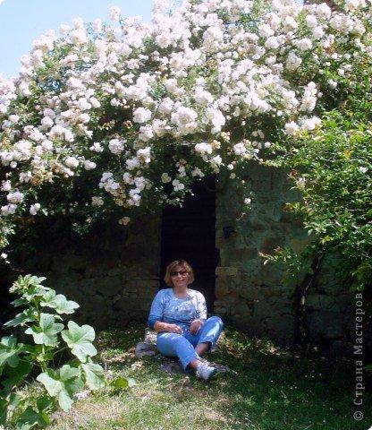 Дорогие,ДЕВОЧКИ,мне очень приятно всегда читать комментарии к моим цветам...Сегодня хочу поделиться с вами красотой других цветов-цветов,которые палит и ласкает солнце,среди июля засыпает снегом....цветов,запах которых неповторим.А с их жизненными силами не сравнится не один садовый цветок.И так приглашаю ВАС в горы...  фото 22