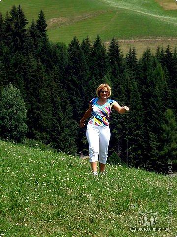 Дорогие,ДЕВОЧКИ,мне очень приятно всегда читать комментарии к моим цветам...Сегодня хочу поделиться с вами красотой других цветов-цветов,которые палит и ласкает солнце,среди июля засыпает снегом....цветов,запах которых неповторим.А с их жизненными силами не сравнится не один садовый цветок.И так приглашаю ВАС в горы...  фото 31