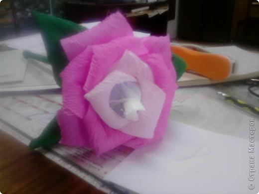 Мой первый сладкий цветочек... фото 1