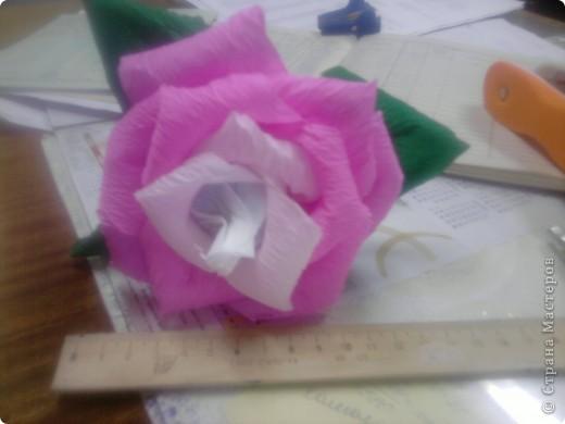 Мой первый сладкий цветочек... фото 2