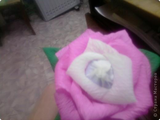 Мой первый сладкий цветочек... фото 3
