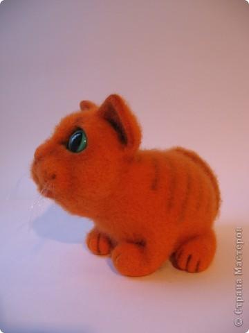 Рыжий котик - обормотик, фото 2
