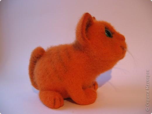 Рыжий котик - обормотик, фото 3