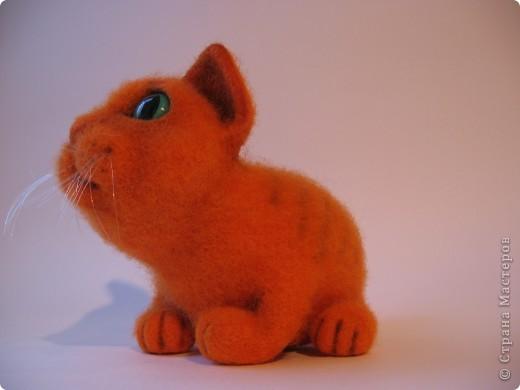 Рыжий котик - обормотик, фото 5