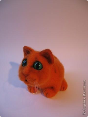 Рыжий котик - обормотик, фото 6