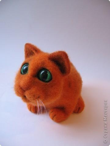 Рыжий котик - обормотик, фото 1