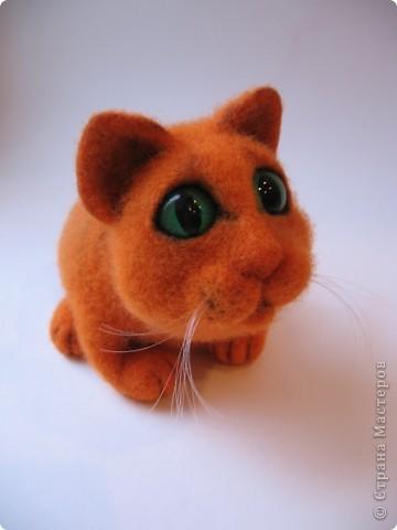 Рыжий котик - обормотик, фото 7
