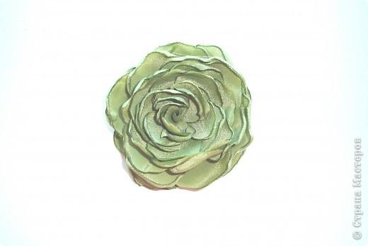 зелененькая розочка