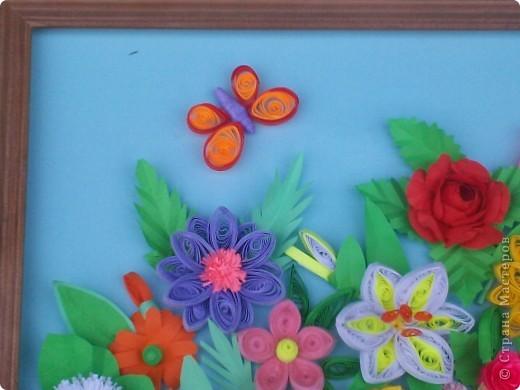 Цветы в палисаднике фото 4