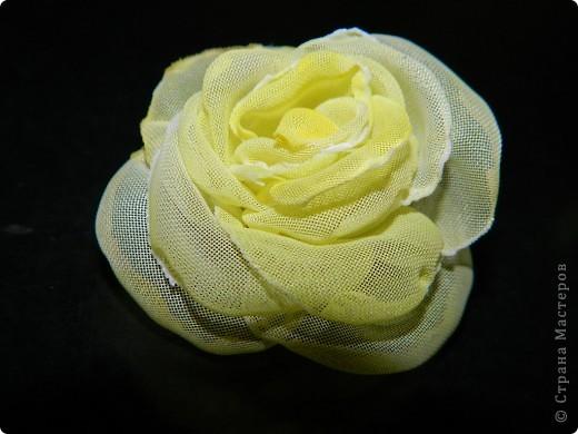 цветочки фото 9