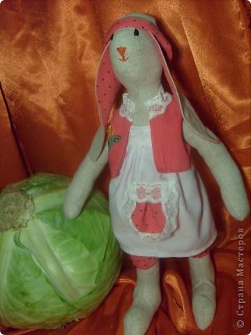 Моя первая зайчишка. фото 1
