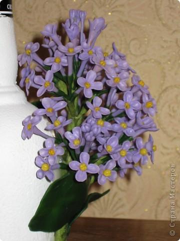 маленький кусочек весны. фото 3