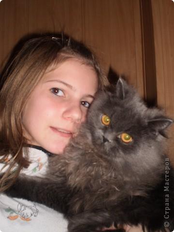 Любимица всей нашей семьи - персидская кошка Мася. Ей 1г.9мес. фото 5