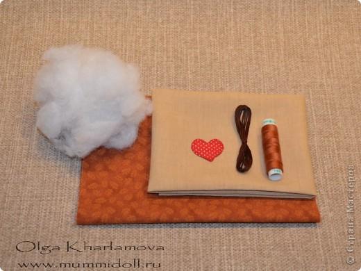 Забавная кукла тильда - Летящий кот, которую вы можете изготовить сами,  будет отличным и оригинальным подарком  вашим друзьям и близким. фото 2