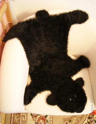 шкура медведя фото 2