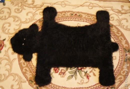 шкура медведя фото 1