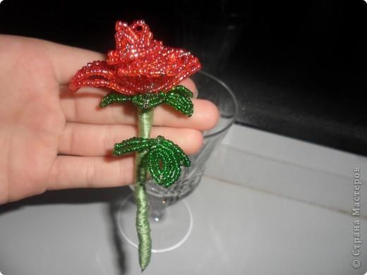 Роза сплетена французским плетением)Крассненькая) фото 2
