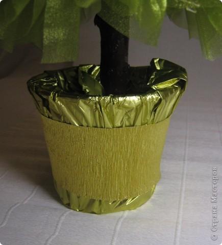 Хочу поделится с Вами тем, как делаю я елочки из конфет. Надеюсь, что Вы еще успеете воспользоваться моим МК. Высота показанной елочки около 75 см. фото 28