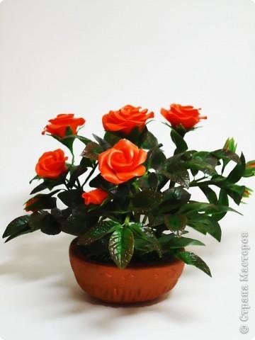 Вот такая маленькая кустовая роза сделана маме в подарок фото 2